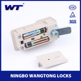 Fechamento de porta inteligente elétrico 9501s da combinação