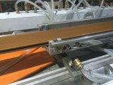 Placa composta da alta qualidade Wood+Plastic que faz a máquina