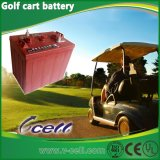 6V180ah (3-D-180) Electric Golf Cart Battery para Deep Cycle Application