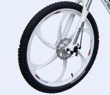 велосипед батареи лития мотора MID-Position 36V 250W электрический (LN26M09)