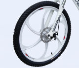36V 250Wの中間位置モーターリチウム電池の電気自転車(LN26M09)