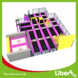 屋内タイプ大きいDodgeballの体操の空気トランポリン公園