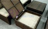 il doppio sofà del rattan by-437 ha unito con la Tabella di tè del Governo della casella di memoria