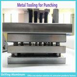 Al pulsar la precisión Die Cast Estampación útiles del molde de perforación