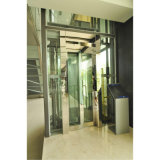 Elevatore del passeggero & elevatore panoramici (U-Q0871)