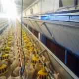 Granja avícola prefabricada con el equipo del control de la vertiente de las aves de corral