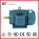 Construction Machinery를 위한 AC Asynchronous Electric Motor