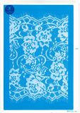 Cordón de la pestaña de la ropa / ropa / zapatos / bolso / la caja J038 (ancho: 4,5 cm-23cm)