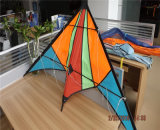 多色刷りのStunt KiteかPromotional Kite From Factory