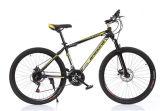 高品質安い山の自転車の道のバイク(ly25)