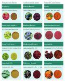 طبيعيّة طعام ملحق بلسان مقتطف, أنثوسيانين 5%-25%