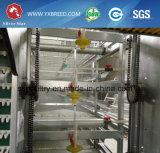 Gabbia di strato del pollo dell'azienda avicola dell'attrezzatura di produzione dell'uovo da vendere