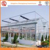Blume/Frucht/Gemüse-Zucht-Glasgewächshaus mit Sonnenschutz-System