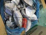 Moonfish congelado 100-150g chino del fabricante