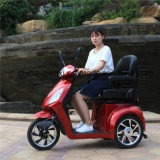Triciclo Disabled approvato del Ce con il prezzo poco costoso