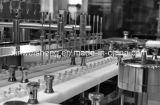 Dessiccateur de stérilisation de circulation d'air chaud de la fiole Asmr1250-8000 pour pharmaceutique