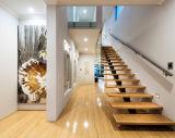 Modèle en bois personnalisé d'escaliers d'escalier droit avec la pêche à la traîne en verre