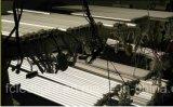 Het LEIDENE Stijve Licht van de Strook voor Vertoning en Tribune Restail