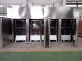 Machine de séchage de plateau de qualité pour la poudre pharmaceutique