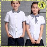 Chemise internationale d'uniforme scolaire