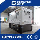 звукоизоляционный тепловозный генератор Fg Wilson генератора 15kVA