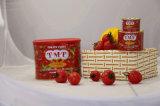 Tomate en conserve Pâte de haute qualité des ingrédients primaires Bon Prix