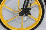 E-Bicyclette d'or pliable du type 36V 250W de bâti d'alliage d'aluminium (JSL039X48-5)