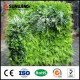 Sunwing barato vertical pared verde para Office Decoración