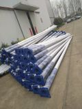Peinture en poudre Hot DIP Galvanized Street Light Steel Pole