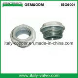 アルミニウムラジエーターの鋼鉄減少のプラグ(AV-R-1001)