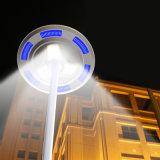 Lámpara al aire libre ligera solar barata de la potencia verde LED de China del precio