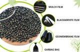 Gránulos funcionales Masterbatch del negro de carbón de LDPE/LLDPE/HDPE/PP/PS del animal doméstico del alambre plástico del cable para