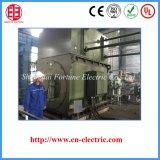 Motor de C.A. variável da freqüência para o moinho de rolamento do açúcar
