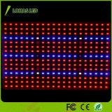 Hydroponic SMD LED 플랜트 빛 300W 가득 차있는 스펙트럼은 빛을 증가한다