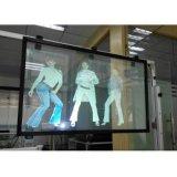 Película de proyección trasera holográfica / película transparente