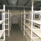 塗られる粉が付いている倉庫の棚