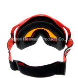 Reanson professionelle Anti-Fog doppelte Objektivesnowboard-Skifahren-Schutzbrillen