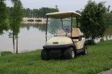 Aluminiumchassis-Verein-Auto 2 Seater elektrische Golf-Karre