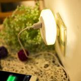 De Adapter van de Lader van de Muur van de Reis USB van het huis met LEIDENE Lichte Waarneming