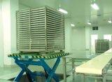 Industriële Farmaceutische Sterilisator met PLC van Siemens