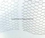 Cage de poulet/compensation de fil hexagonale galvanisée