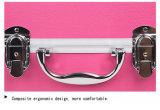 Случай подгонянный профессионалом трудный алюминиевый косметический, с по-разному цветами для сбывания (KeLi-C-11)