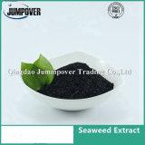 中国の製造の有機肥料の海藻エキス