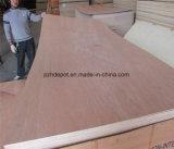 Madera contrachapada, madera aserrada con pegamento resistente al agua de la madera dura Core