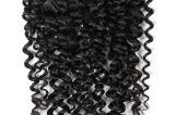 De Braziliaanse Inslag van het Menselijke Haar van het Haar Kroezige Krullende Maagdelijke