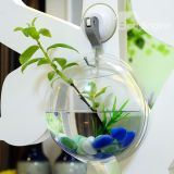 Bacia acrílica dos peixes da esfera do plexiglás fixado na parede transparente