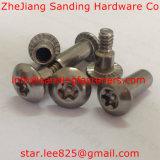 Roestvrij staal 304 Anti-diefstal Torx Aandrijving Setscrews