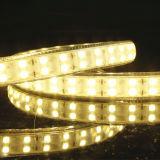 5050SMD LED 지구 빛 22-24lm 144LEDs 16mm 보드 폭 세륨 RoHS