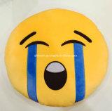Het Hoofdkussen van Emoji van de emotie met Kleurrijk Borduurwerk