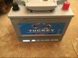 Batterij van de Auto van het Onderhoud 12V62ah van Tuckey DIN62mf de Vrije